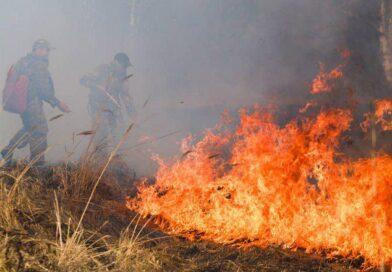 Партийцы Якутска отправляются на тушение лесных пожаров